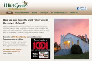 wild-goose